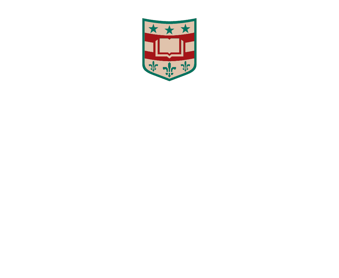 Washington University in St. Louis - Sponsor of Dimensions: An Interactive Portal Experience by Stereo Assault